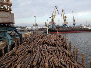 Krostar markets about 800,000 tons of wood chips and trunks every year.