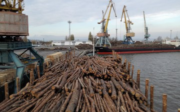 The wood market in Europe: the importance of certifications