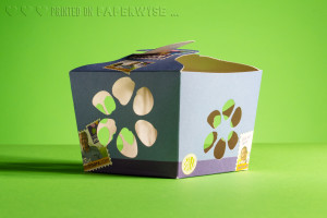 PaperWise packaging physalis fruit 2
