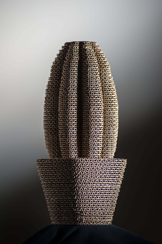 cactus-002a