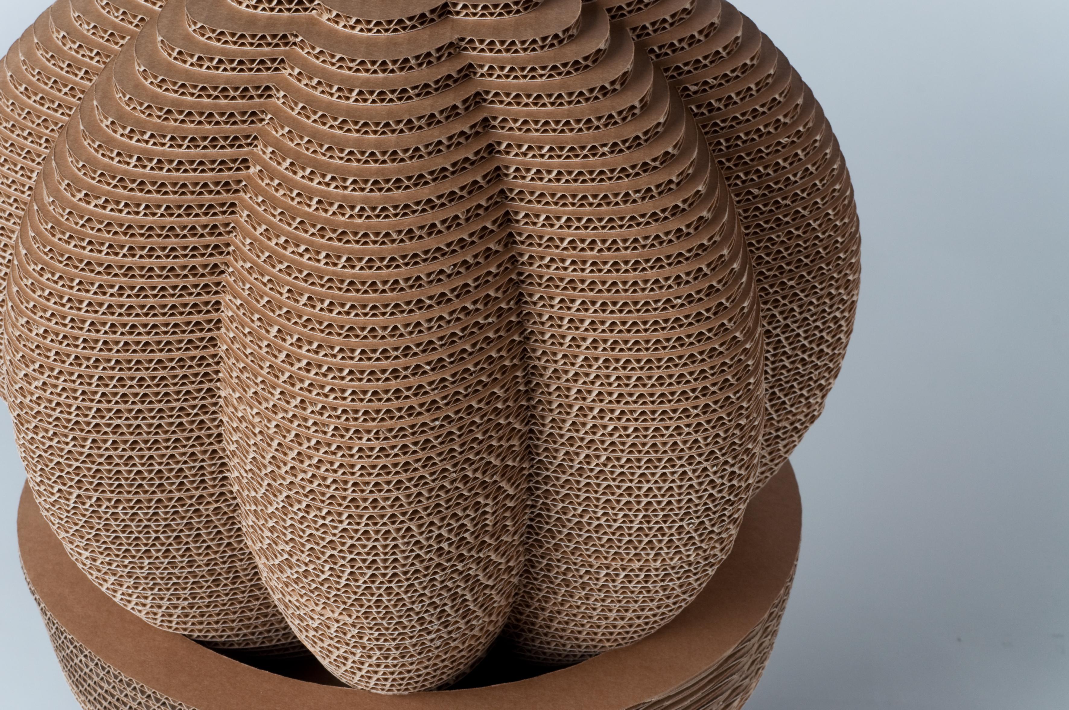 cactus-019