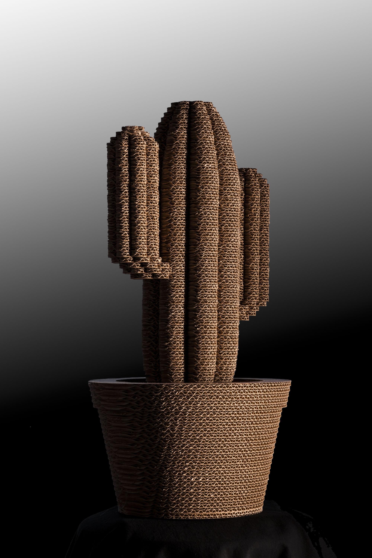cactus-008a